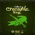 Crocodile Teeth
